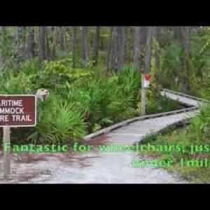 St Josephs Peninsula Florida State RV Park  - St Joes Camping